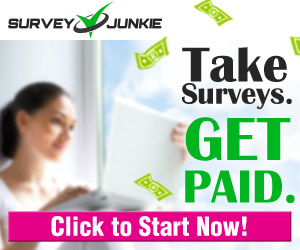 Survey Junkie Surveys