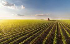 Farmland for Passive Income