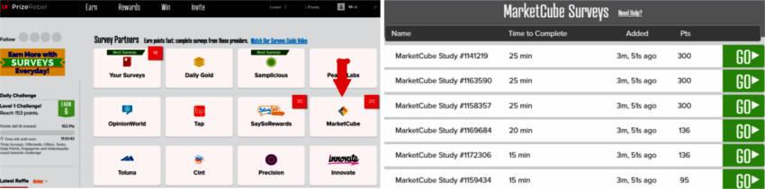 Money for Surveys Prize Rebel - Marketcube Surveys