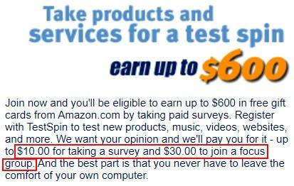 Online Survey TestSpin - Promises