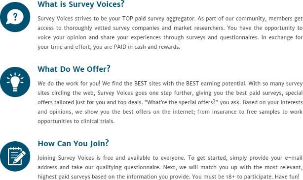 Survey Website Survey Voices Homepage