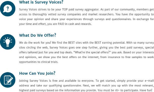 Survey Website Survey Voices Homepage