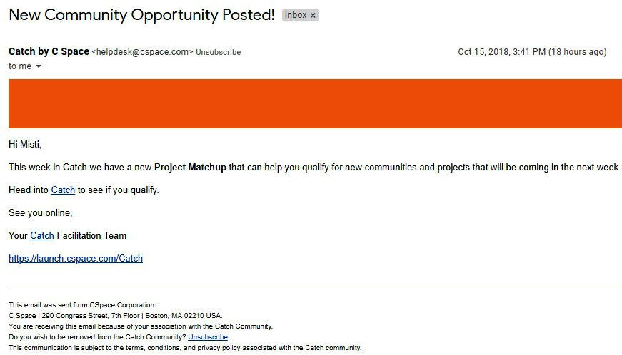 Survey Websites Catch - Project Matchup Email